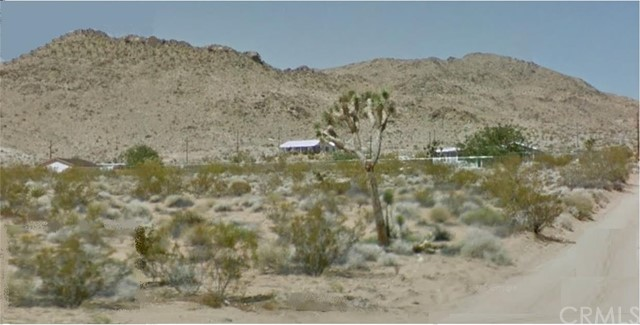 988 Old Woman Springs Road Yucca Valley CA  92284