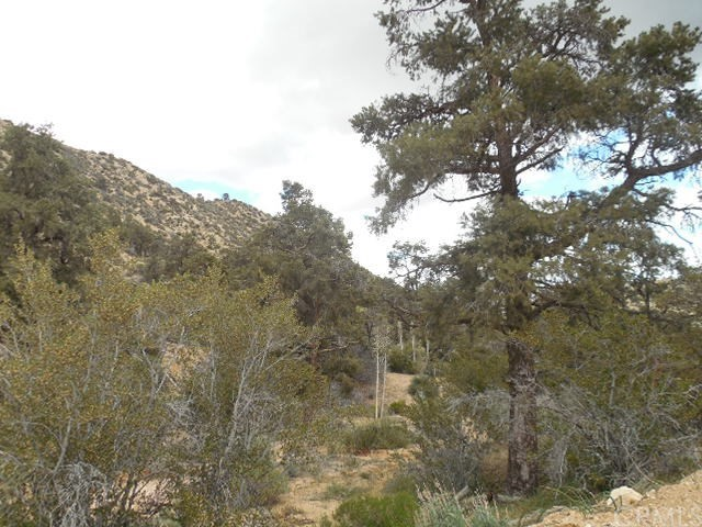 0 Old Oak Springs/Desert Front, Pinon Hills CA: http://media.crmls.org/medias/f1b83808-0e65-4289-8677-66110fe1a20f.jpg