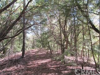 0 Big Basin Way, Outside Area (Inside Ca) CA: http://media.crmls.org/medias/f2cfbb3a-a5d1-4d7c-b05d-0330e004be22.jpg