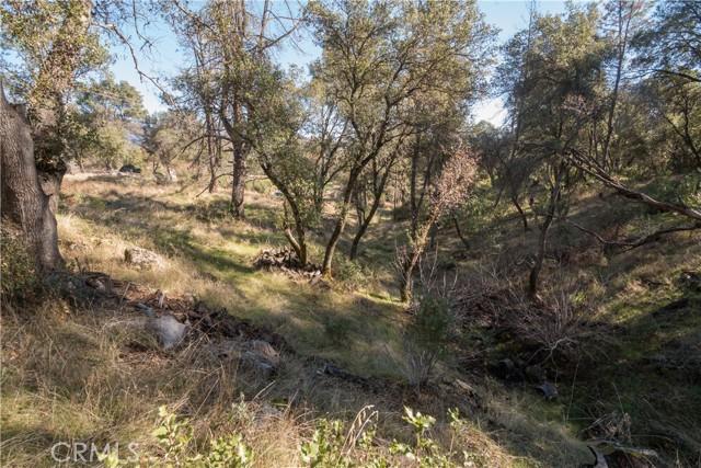 4907 Stumpfield Mountain Road, Mariposa CA: http://media.crmls.org/medias/f34bd948-be2b-43b0-b4dc-95516fbac891.jpg