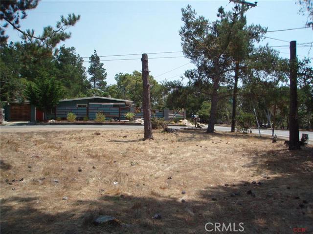 1213 Warren Road, Cambria CA: http://media.crmls.org/medias/f48808dc-b122-4595-b07d-845f5c0f0df5.jpg
