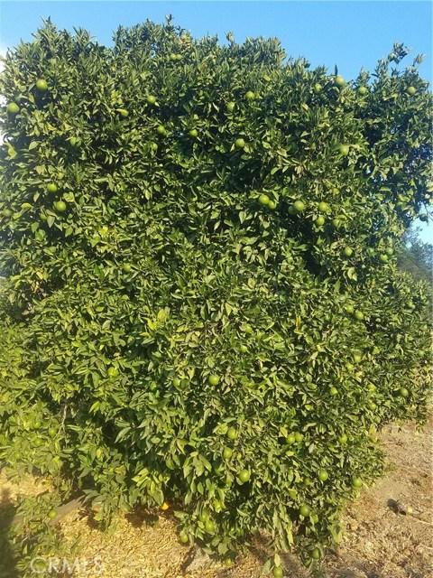0 Sandia Creek Dr, Temecula, CA  Photo 67