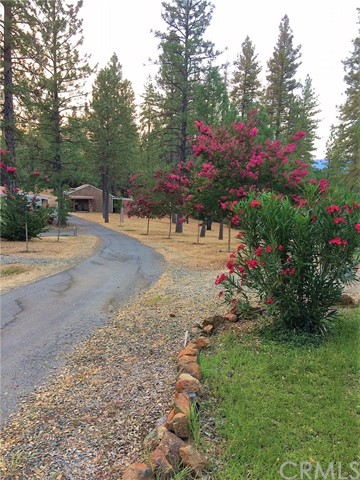 13157 Yuba Nevada Road Dobbins, CA 95935 - MLS #: SN18196197