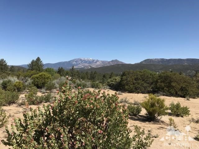 14 Gold Shot Creek Mountain Center, CA 0 - MLS #: 218012570DA
