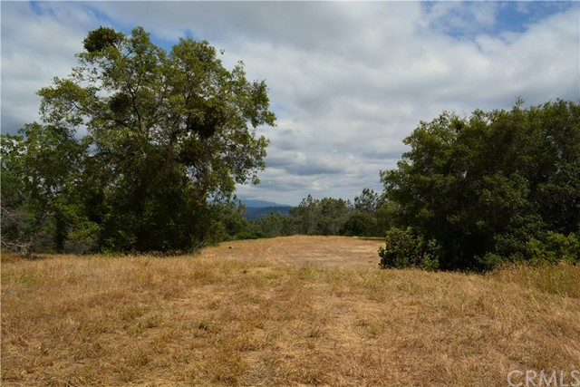 4 Buck Lane, Coarsegold CA: http://media.crmls.org/medias/f59c544f-8141-4d5a-aad7-51346ba6b42f.jpg