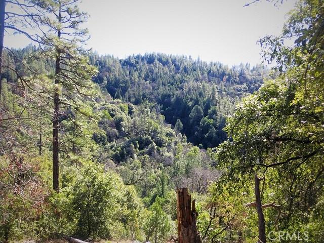 26 Fair Weather Court, Berry Creek CA: http://media.crmls.org/medias/f5fc7b7b-f0f9-41bf-9e88-1dae789f71ab.jpg
