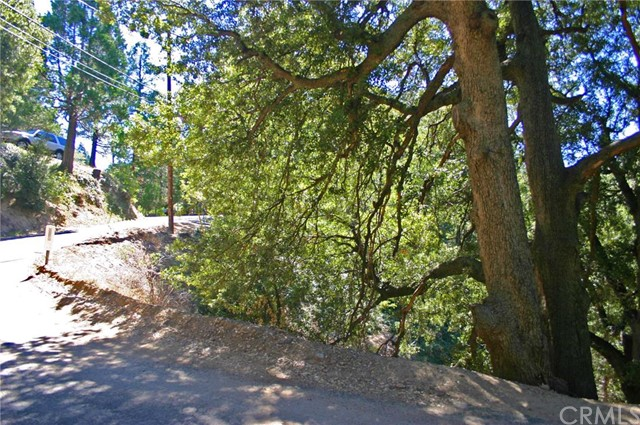 Additional photo for property listing at 0 Arbula  Crestline, California 92325 United States