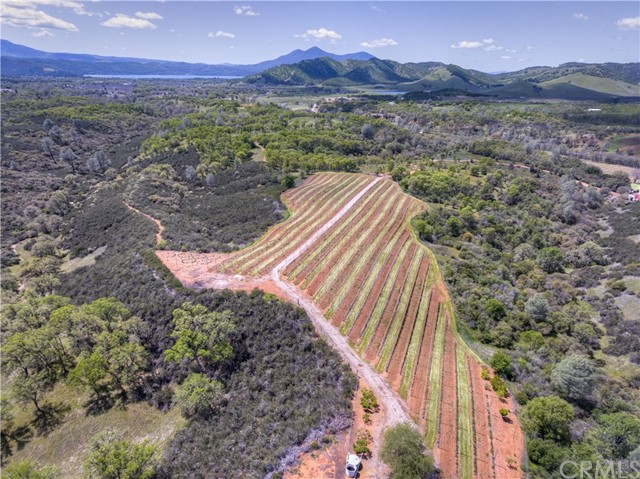 2050 Ogulin Canyon Road Clearlake, CA 95422 is listed for sale as MLS Listing LC18092183