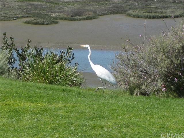2915 Perla, Newport Beach CA: http://media.crmls.org/medias/f82fa96d-11d3-4ec4-801b-e65c79203a15.jpg