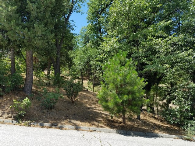 28310 Bern Lane, Lake Arrowhead CA: http://media.crmls.org/medias/f8666730-30aa-4bc8-8a17-69c164581a3a.jpg