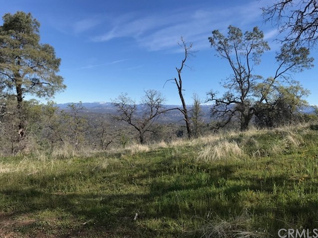 0 Lot 1507 Lilley Mountain Drive, Coarsegold CA: http://media.crmls.org/medias/f87d9193-a110-48b2-acbd-bd02e0d939dc.jpg