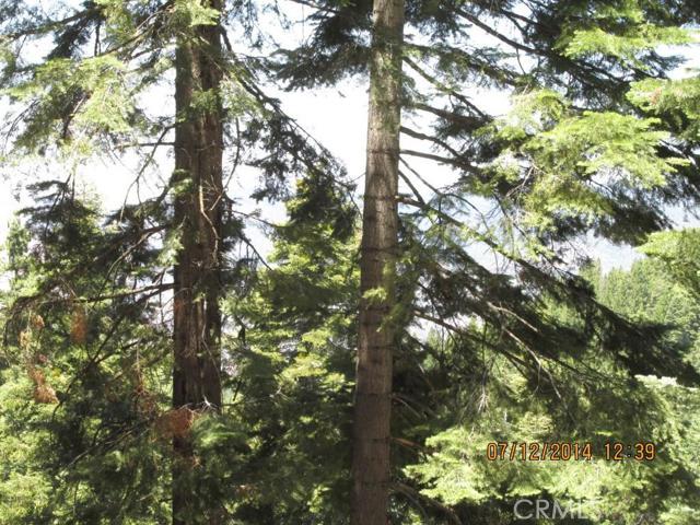 Additional photo for property listing at 7365 Yosemite Park Way  Yosemite, California 95389 United States