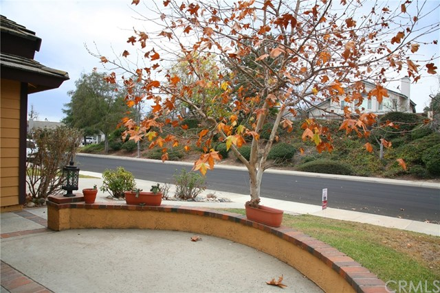 41472 Willow Run Rd, Temecula, CA 92591 Photo 6