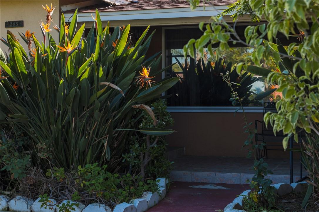 245 N Evelyn Dr, Anaheim, CA 92805 Photo 11