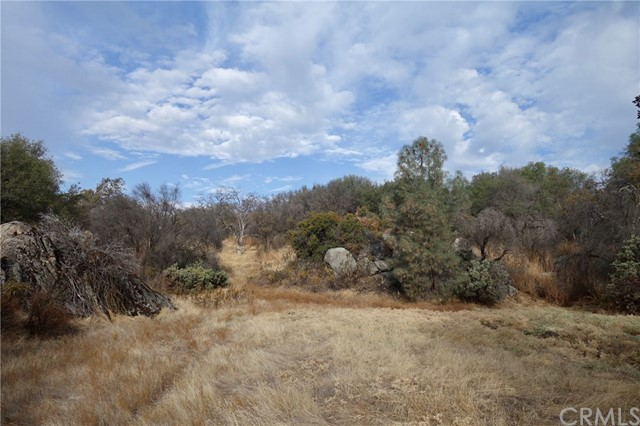 4486 S State Highway 49 Mariposa, CA 95338 - MLS #: MP17246242