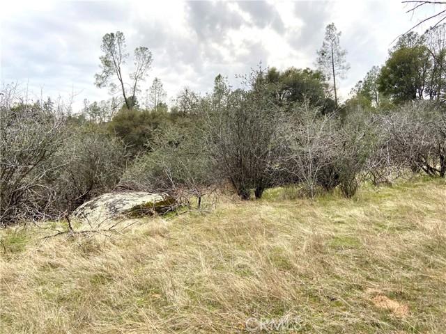 4907 Stumpfield Mountain Road, Mariposa CA: http://media.crmls.org/medias/fa947225-28e2-4be6-8a66-1b9277eaa417.jpg