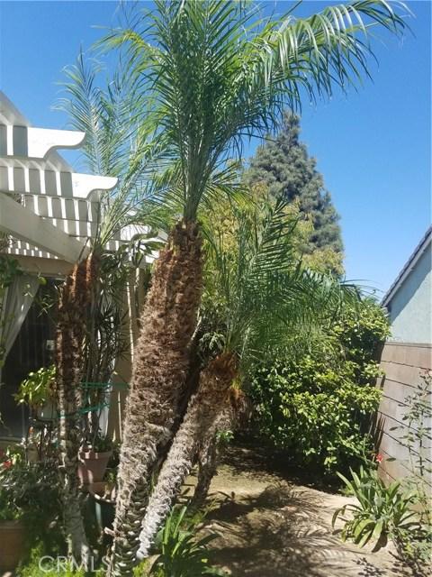 11306 Ainsley Avenue, Riverside CA: http://media.crmls.org/medias/fab6709a-1524-403e-99b1-6e0922676e87.jpg