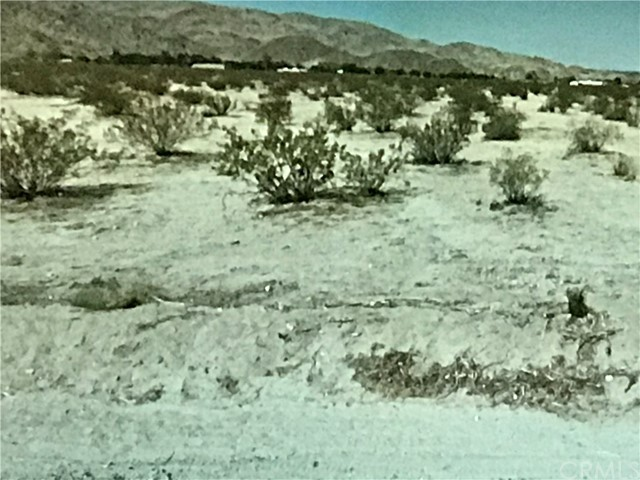 0 Old Dale And Rose Ellen Ave, 29 Palms, California, 92277