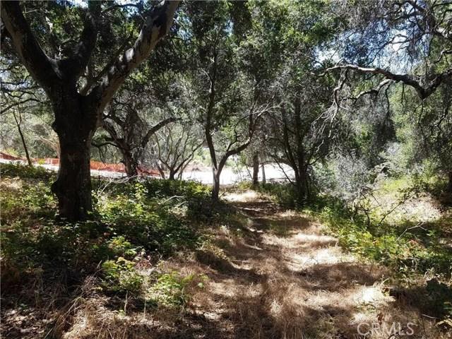 0  La Teena Pl Road, Arroyo Grande in San Luis Obispo County, CA 93420 Home for Sale