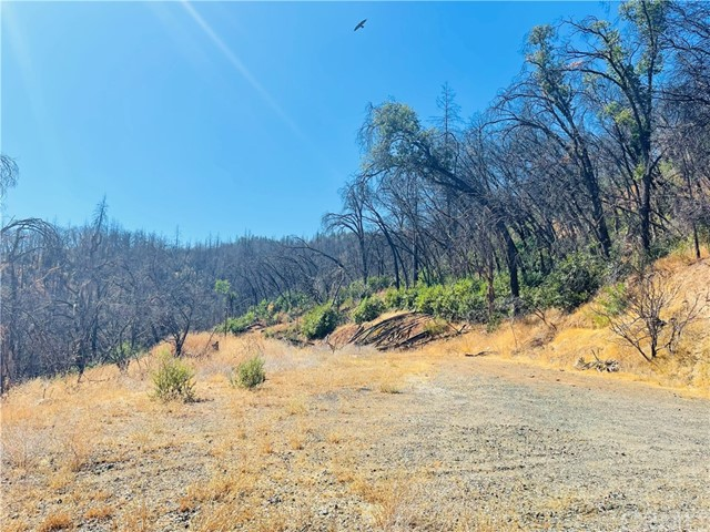 12657 Elk Mountain Road, Upper Lake CA: http://media.crmls.org/medias/fcf66875-1aac-4eba-9598-1ac77809d8ea.jpg
