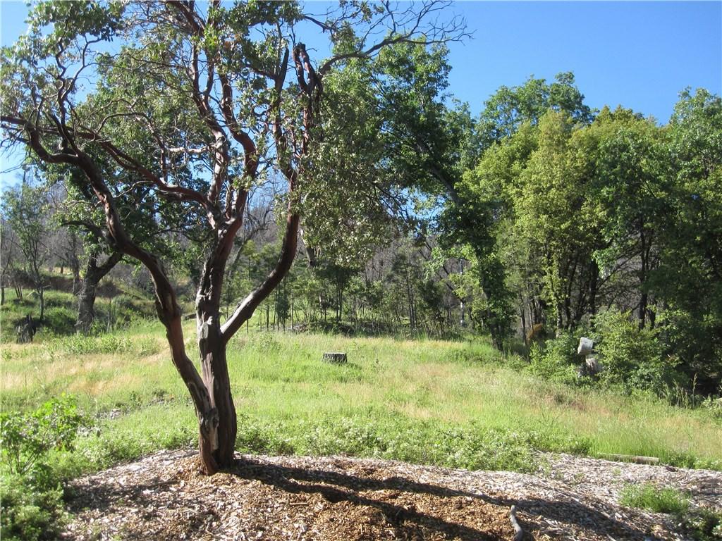 0 Loma Linda Lane, North Fork CA: http://media.crmls.org/medias/fd0a3d3e-23fe-485f-b75f-d6e227ca2be2.jpg