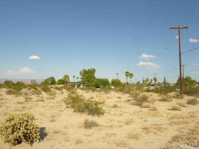 0 Two Mile Road, 29 Palms CA: http://media.crmls.org/medias/fd47f050-868a-4235-bb90-78dfb49c741e.jpg