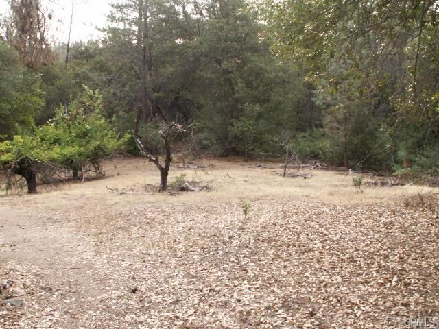 Single Family for Sale at 1 Union Bar Road Feather Falls, California 95940 United States