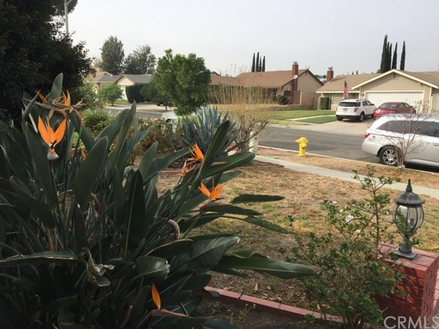 974 Aspen Street Corona, CA 92879 - MLS #: IV18005277