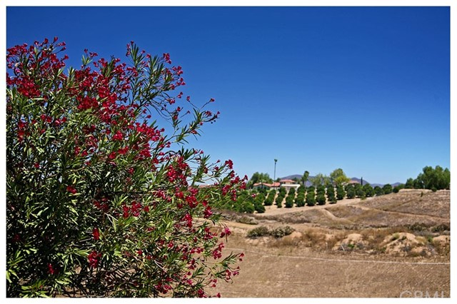 35051 Calle La Coca, Temecula CA: http://media.crmls.org/medias/fffcd27a-715e-4021-b4d6-7a989bb44c5b.jpg