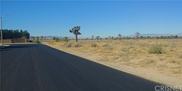 Terreno por un Venta en Vac/Cor Avenue L12 Pav /Ave L1 Lancaster, California 93534 Estados Unidos