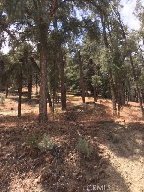 14732 Pinehurst Drive Pine Mtn Club, CA 93225 - MLS #: SR17131510