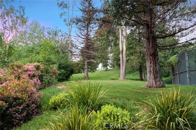 24341 Rolling View Road, Hidden Hills CA: http://media.crmls.org/mediascn/05c6781f-afd5-43ad-977e-17dd86b33ec9.jpg