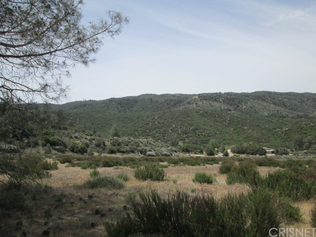 0 Three Points Rd at Pine Canyon, Lake Hughes CA: http://media.crmls.org/mediascn/0d3b3cd9-a254-46af-b6ee-707474442417.jpg