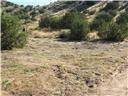 0 Bent Spur Acton, CA 0 - MLS #: SR17183853
