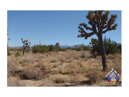 50 Street East and Mt. Emma/Cheseboro Road Palmdale, CA 93550 - MLS #: SR16144251