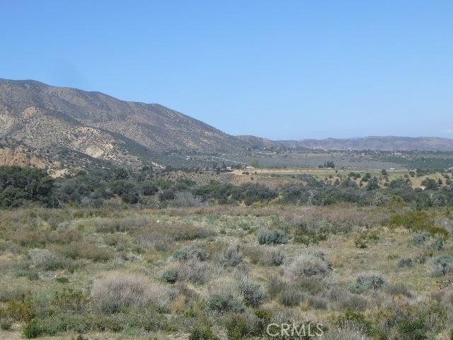 0 Vac/Pine Rock Rd/Vic Big Sky Drive, Juniper Hills CA: http://media.crmls.org/mediascn/32f54115-f411-41c6-b386-5b63a9f38f6b.jpg
