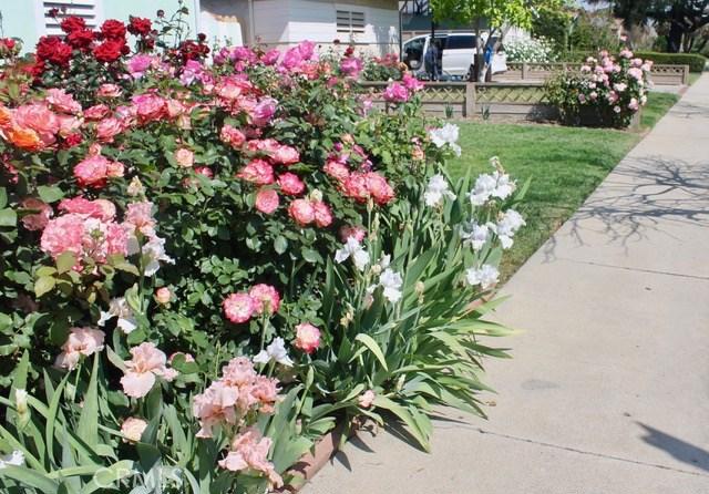 5743 Natick Avenue, Sherman Oaks CA: http://media.crmls.org/mediascn/3ae1faed-5c77-4716-96e0-4fd82d362584.jpg