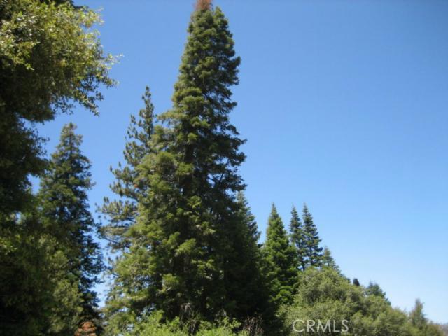16401 Grizzly, Pine Mtn Club CA: http://media.crmls.org/mediascn/3c896b4d-50b0-4e2b-8140-f351000af9dd.jpg