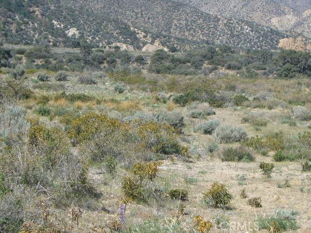 0 Vac/Pine Rock Rd/Vic Big Sky Drive, Juniper Hills CA: http://media.crmls.org/mediascn/41211f54-e31d-41a9-bf7b-9e8e83c4dc67.jpg