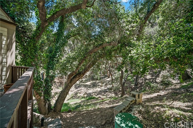 3445 Old Topanga Canyon Rd, Topanga, CA 90290 photo 37