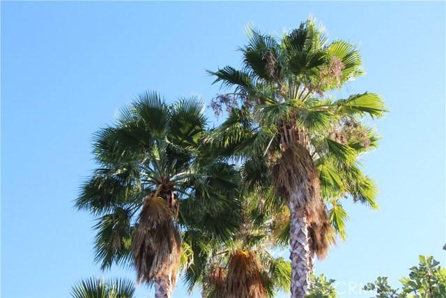 4486 Winnetka Avenue, Woodland Hills CA: http://media.crmls.org/mediascn/4da83683-19f8-43bb-8625-de7502fe9fc9.jpg