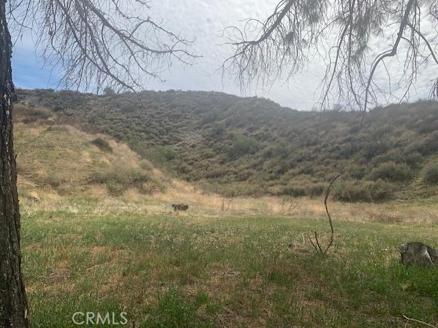 Photo of Scherzinger, Canyon Country, CA 91387