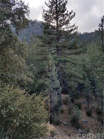 1513 Woodland Pine Mtn Club, CA 93222 - MLS #: SR18127525