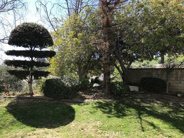 17806 Arvida Drive, Granada Hills CA: http://media.crmls.org/mediascn/6026c276-f3b4-4602-a2ed-859c631e5721.jpg
