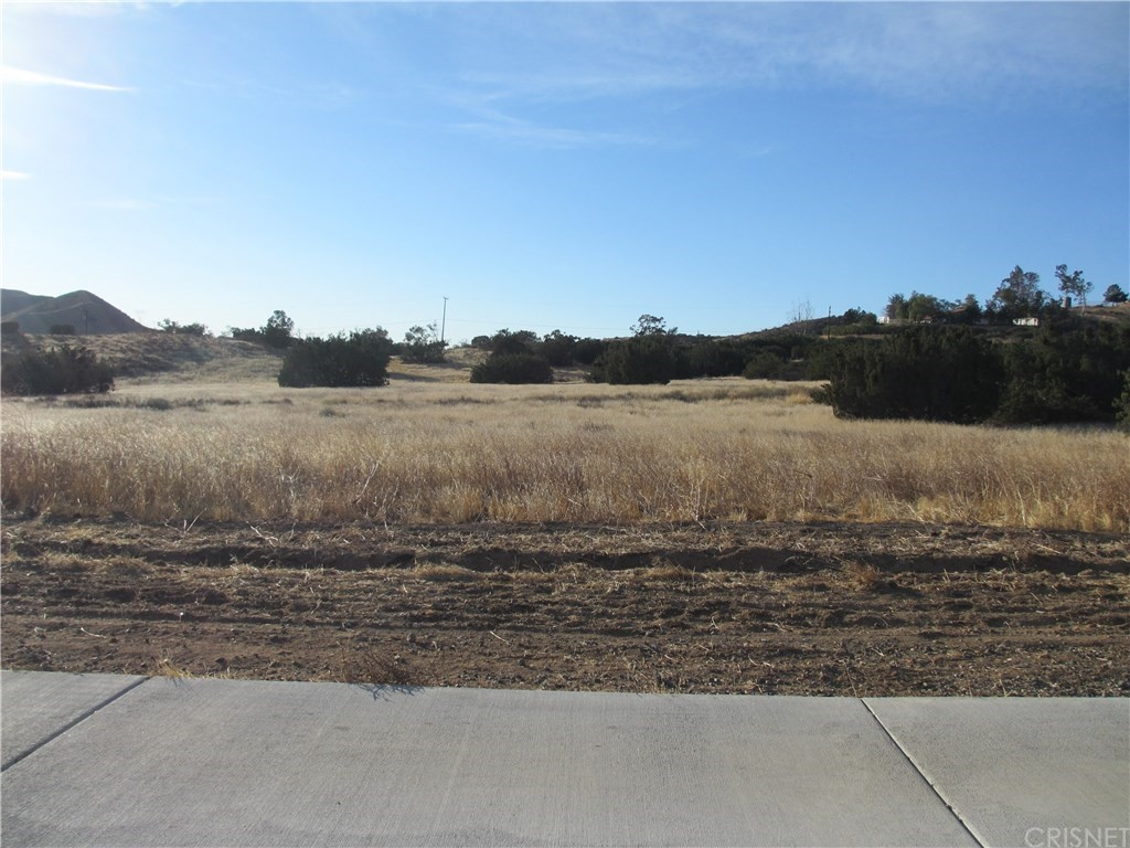 Photo of 0 Dulce Ranch Road, Agua Dulce, CA