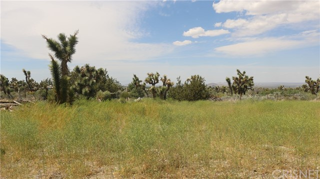 1150 Locust Road, Pinon Hills CA: http://media.crmls.org/mediascn/8f4881f8-f6cd-4f20-9f95-145e6881a718.jpg