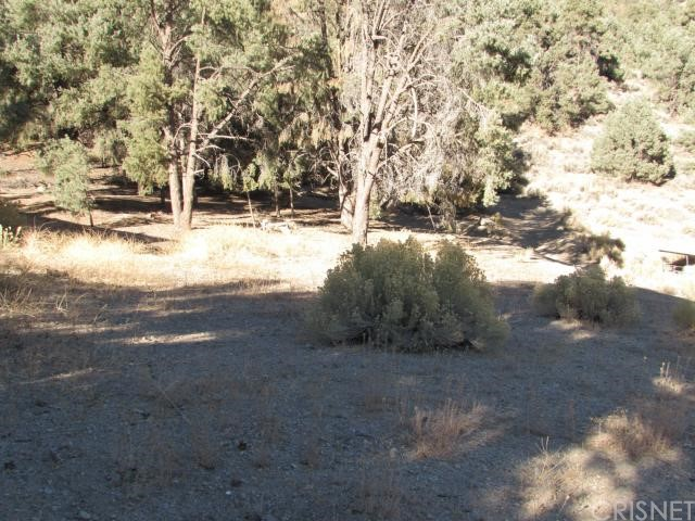 16401 Grizzly, Pine Mtn Club CA: http://media.crmls.org/mediascn/9f5761bc-160b-4b9d-8779-73b7cf3f84a5.jpg
