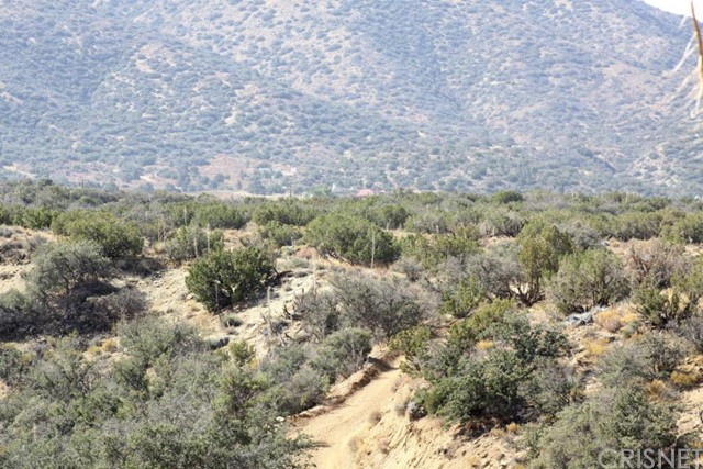 0 Vac/Vic 106 Ste/Fort Tejon Road Juniper Hills, CA 93543 - MLS #: SR17243796