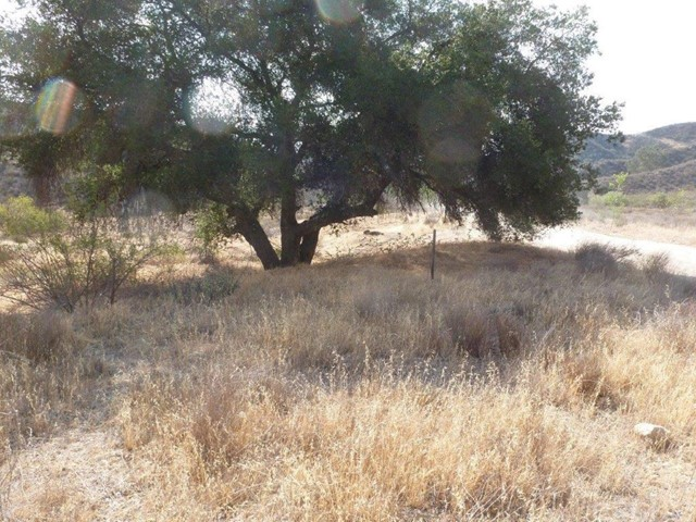 Single Family for Sale at 0 Hasley Canyon Road Castaic, California 91384 United States