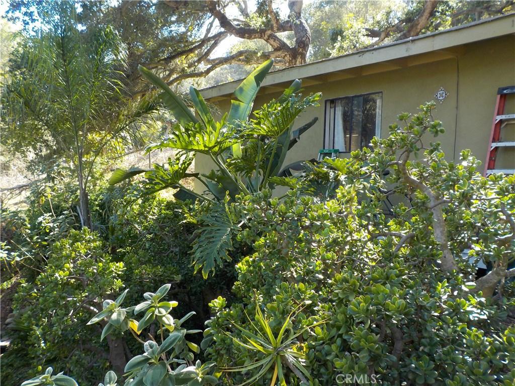 1640 Calle Canon, Santa Barbara, CA 93101 Photo 9